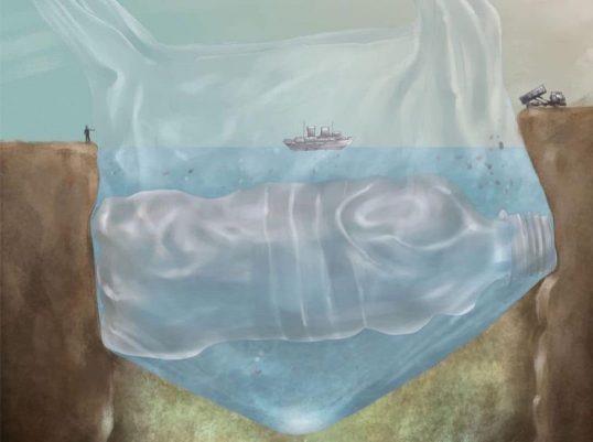 Pollution marine par les déchets plastiques.